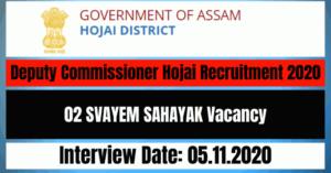 Deputy Commissioner Hojai Recruitment 2020: Apply For 02 SVAYEM SAHAYAK Vacancy